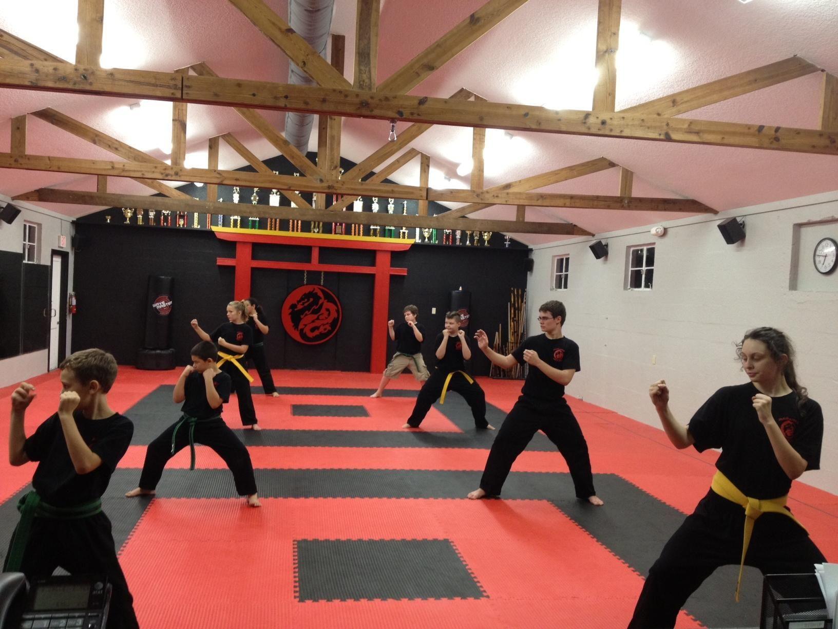 Great Design For A School Dragon Warrior Martial Arts Martial Arts Gym Taekwondo Training Karate School