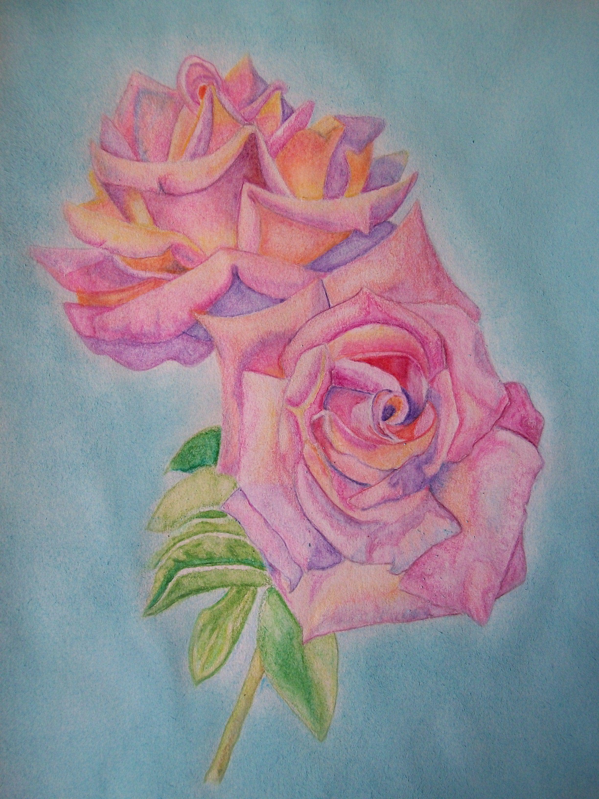 Resultado de imagen para imagenes de rosas para dibujar a lapiz