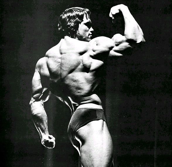 Arnold Schwarzenegger The Best Gallery Of This Bodybuilding Icon Schwarzenegger Bodybuilding Arnold Workout Arnold Schwarzenegger