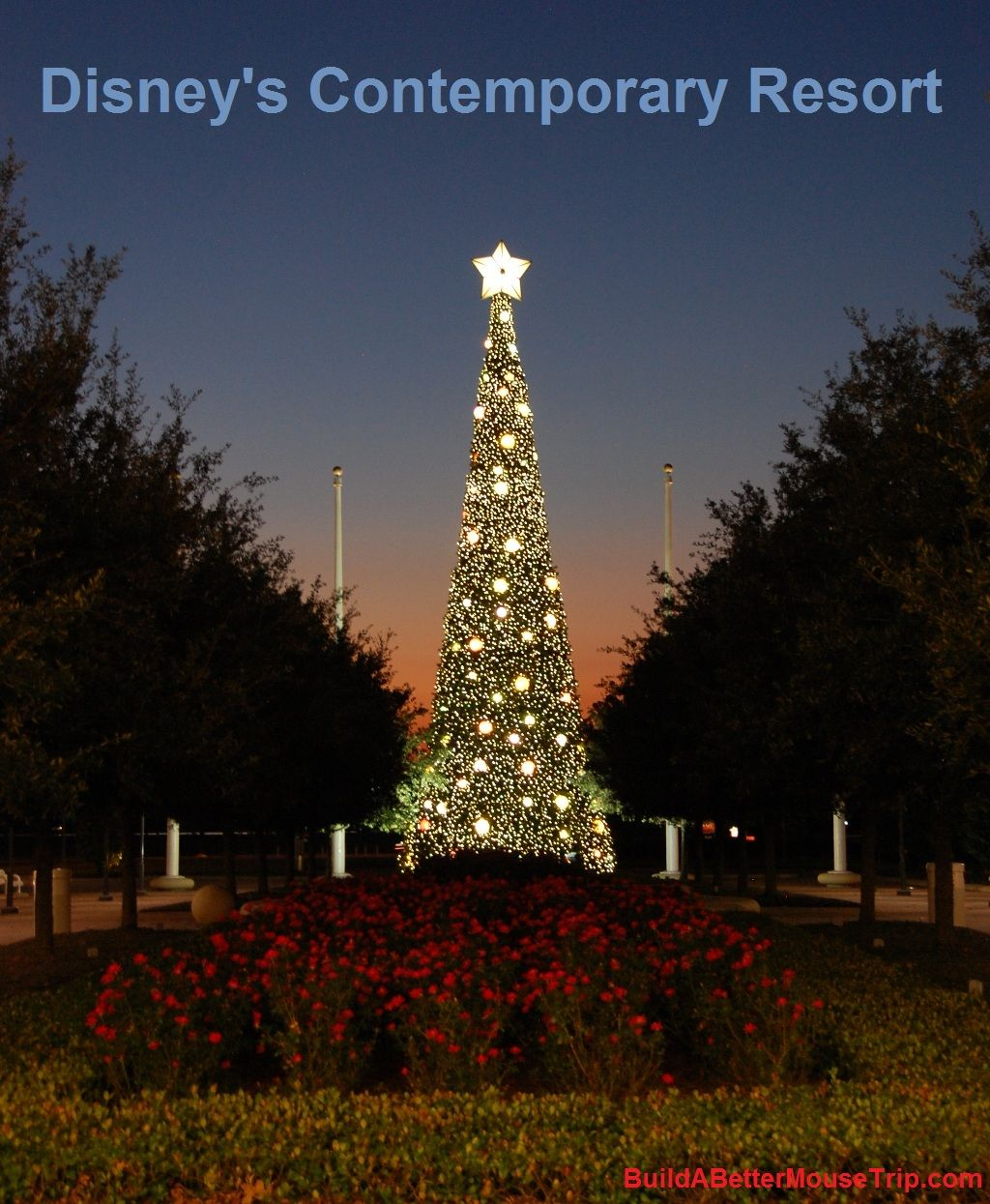 The Christmas Tree outside Disney's Contemporary Resort