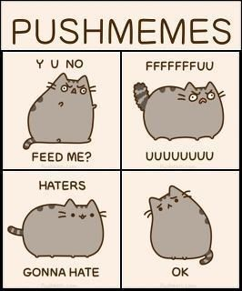 6fccb44fd75c5c4c4415aac4f74366e0 pusheen memes pusheen pinterest pusheen, memes and pusheen cat