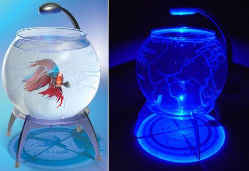 13 Fish Bowl And Aquarium Design For Fish Lover Cool Fish Tanks Cool Fish Unique Fish Bowls