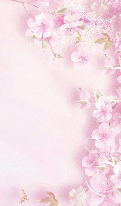 Pin Oleh Mohsin Khan Di Screenshots Bunga Sakura Bingkai Bunga Poster Bunga