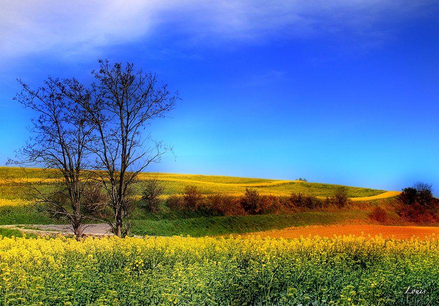 photo paysage printemps c 39 est le printemps pinterest photos paysage paysages et printemps. Black Bedroom Furniture Sets. Home Design Ideas