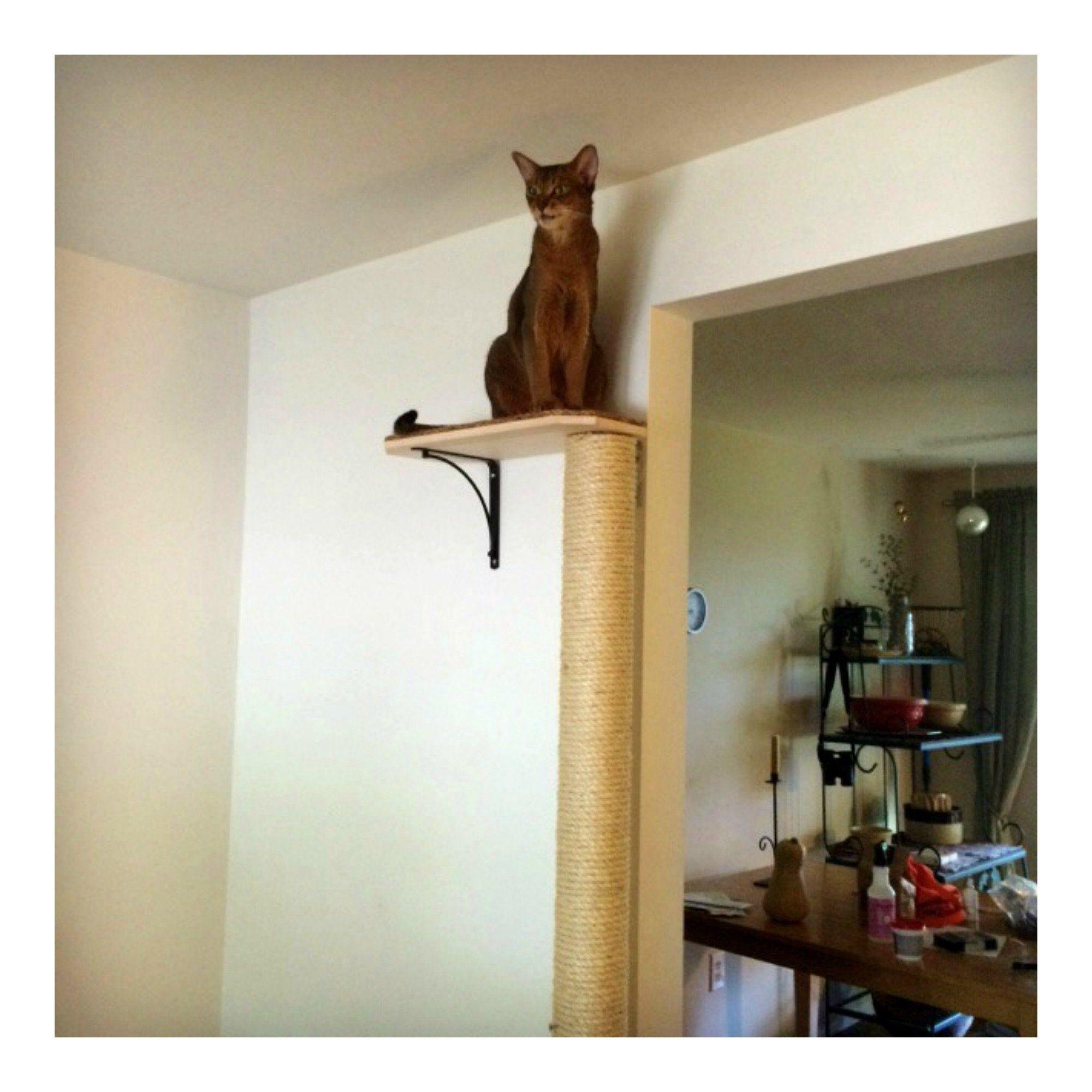 Cat tree climbing pole sisal rope cat scratching post