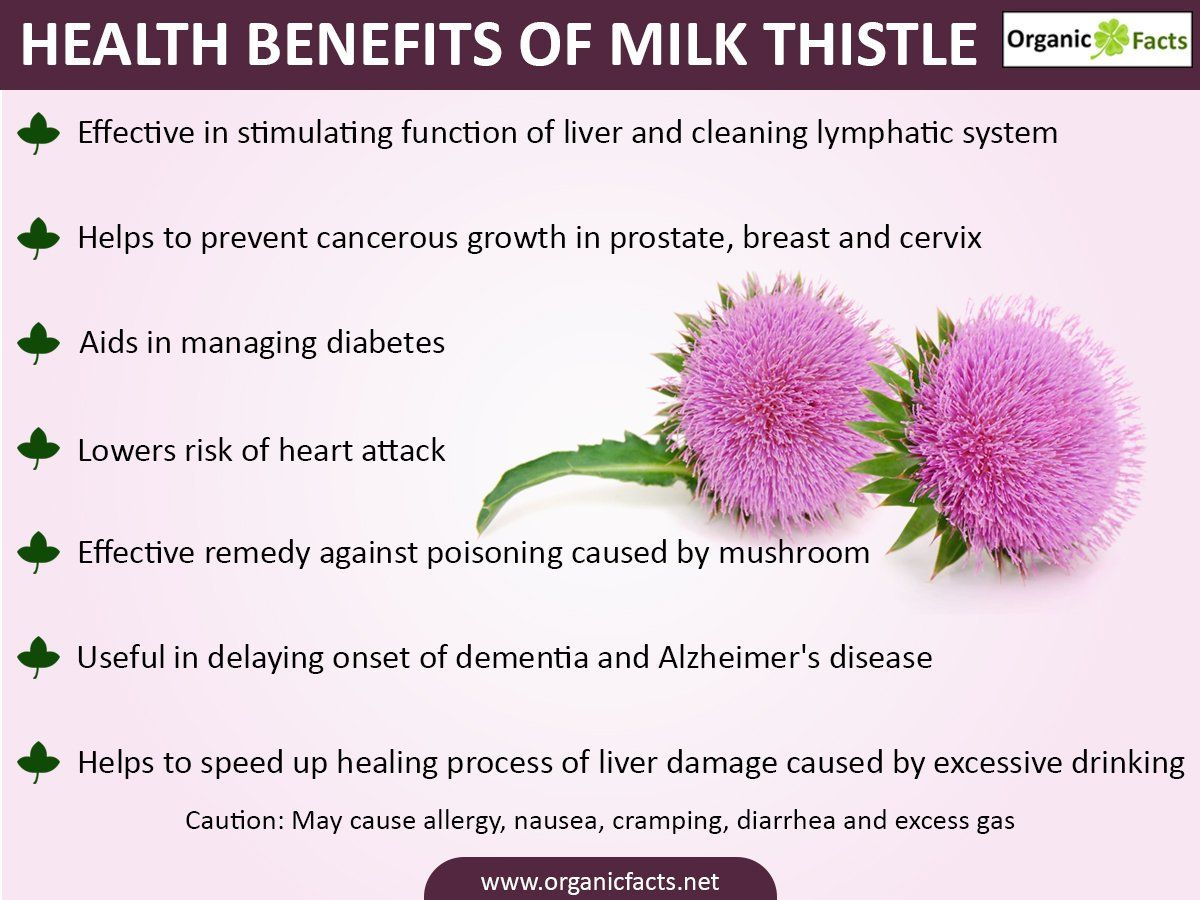 35+ What is milk thistle extract inspirations