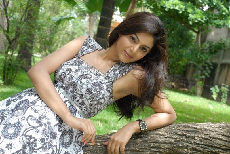 Sanam Shetty Latest Pics - Photos,Images,Gallery - 12483
