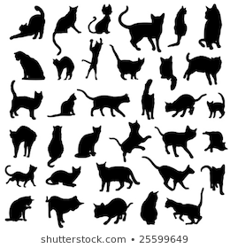 set vector silhouettes cat different poses stock