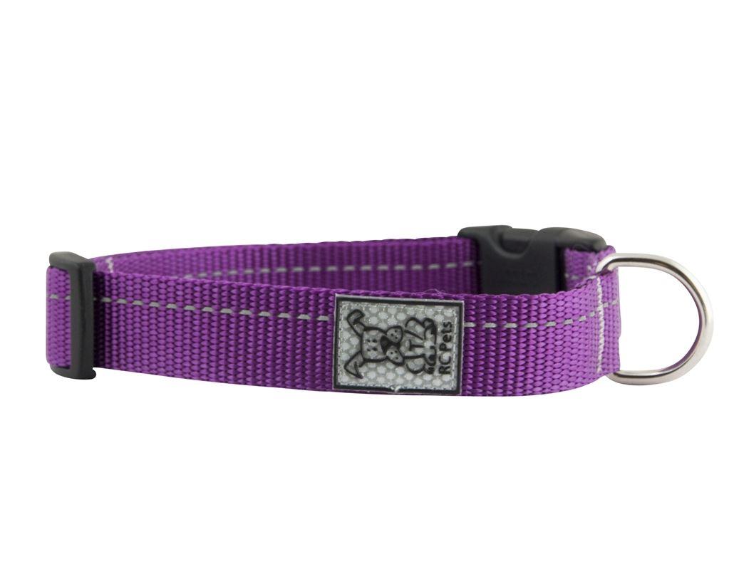 I Love This Primary Clip Collar Dog Collar Purple Pet Fashion