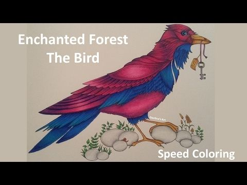 How I Colour A Bird Blending Colours
