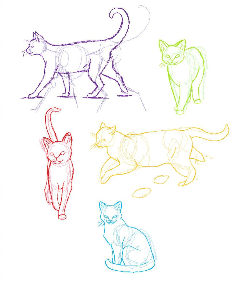 Anatomy Practice Cats By Candracar272 Art 2018 19 In 2019