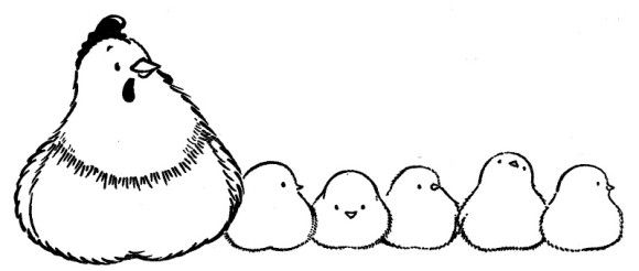 Baby Chicken Coloring Pages   Farm Animal Coloring Pages Hen And ...