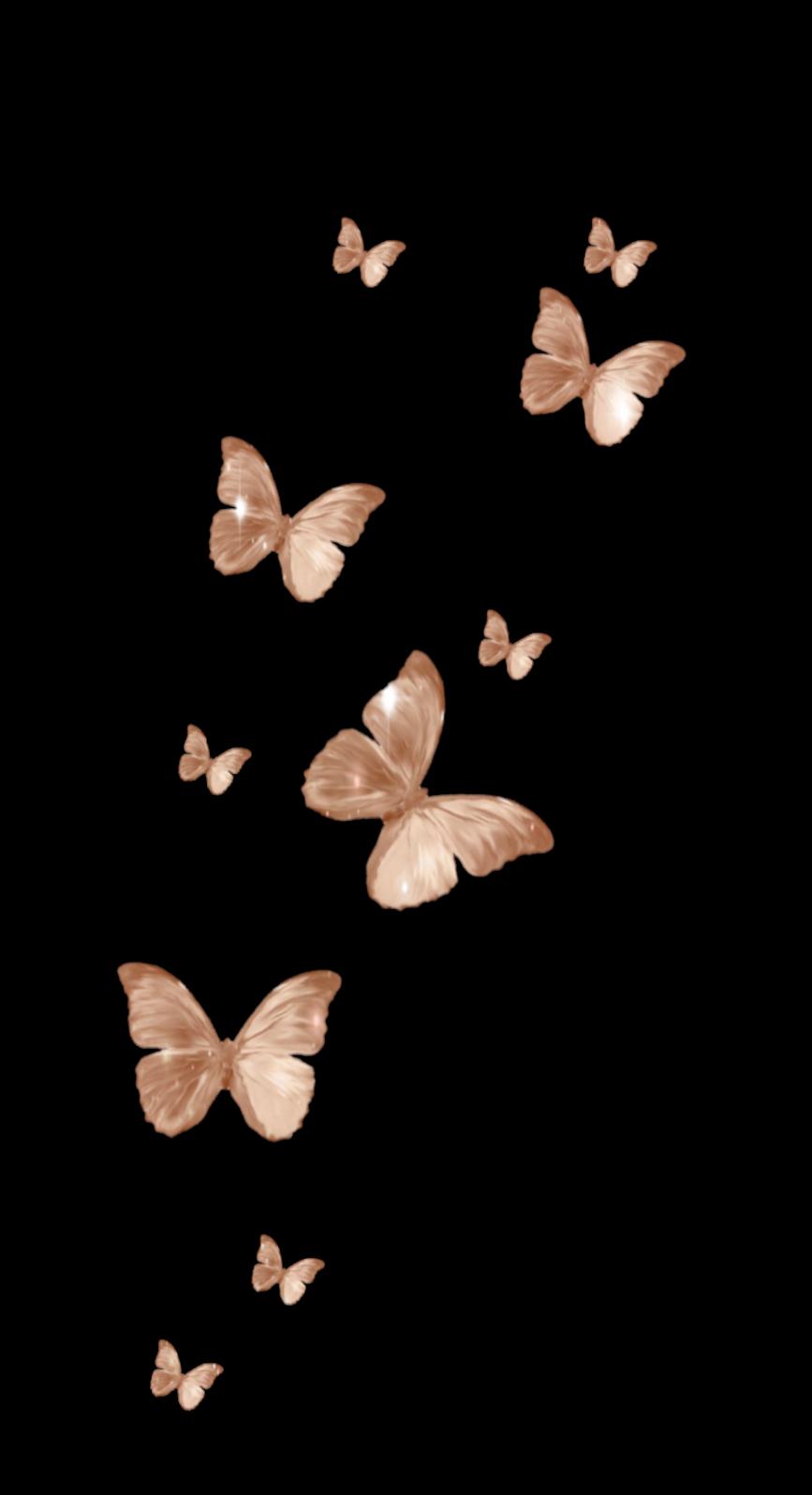 #freetoedit #freetoedit #butterfly #aesthetic #vintage #sticker #aestheticsticker