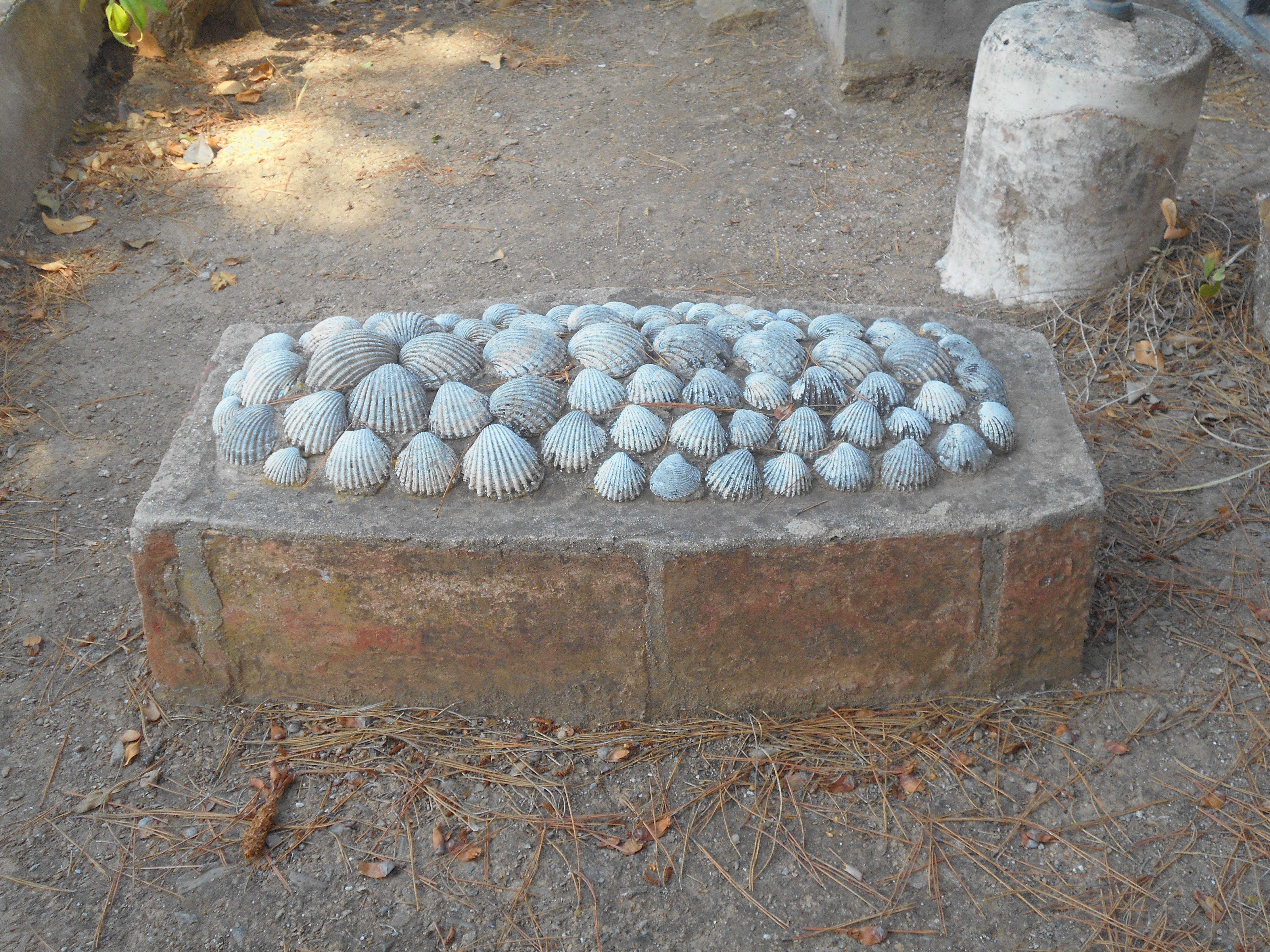 Una de las tumbas mas antiguas. las cochas recuerdan que hasta la existencia de este cementerio a los británicos fallecidos se les enterraba en las playas , junto al rompeolas, durante la noche , desapareciendo sus  restos en poco tiempo. Esto ocasionaba problemas de insalubridad