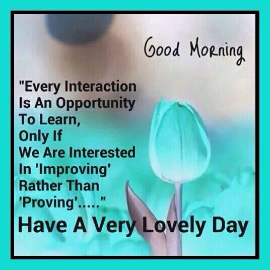 Good morning quotes good mrng pinterest morning greetings good morning quotes m4hsunfo