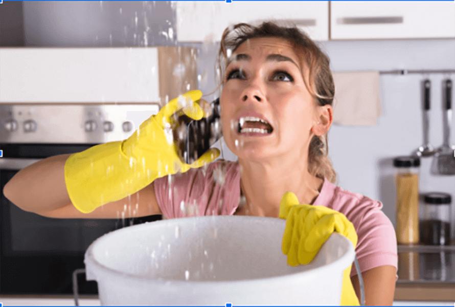 24/7 Emergency Plumbing in Olympia in 2020 | Roof leak ...