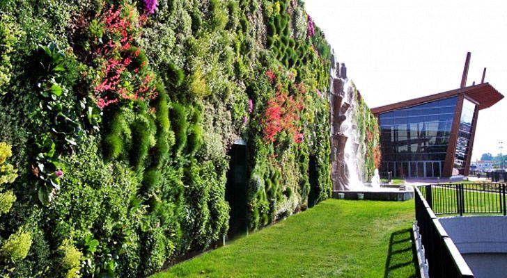 How To Build A Living Wall google-ergebnis für http://inhabitat/wp-content/blogs.dir/1