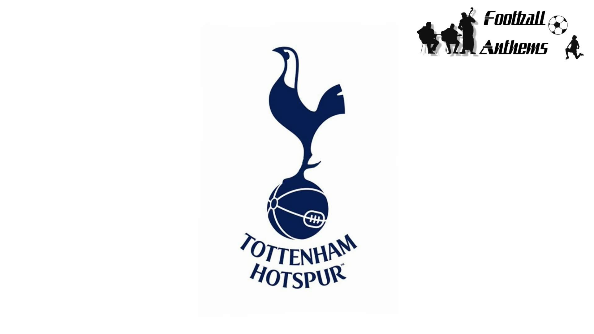 Tottenham Hotspur FC Official Football Gift Mens Graphic T-Shirt