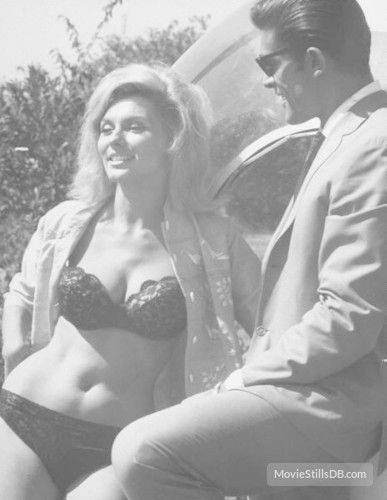 nancy kovack photo gallery