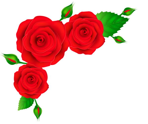 Red Roses Corner Transparent Png Clip Art Image Rose Clipart Rose Painting Hand Painted Roses