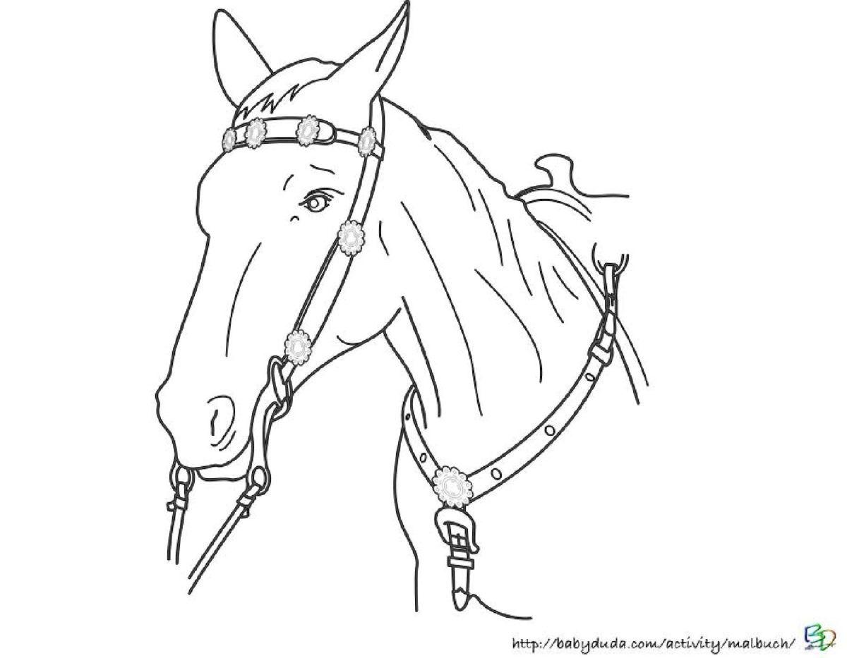 26 Beste Malvorlage Pferdekopf Anschauung 26