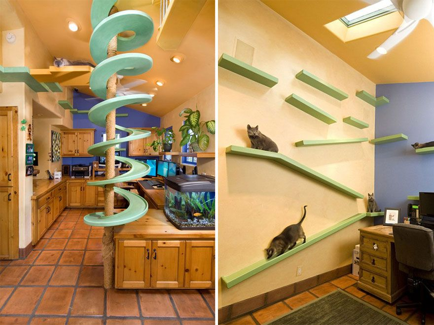 25 Awesome Furniture Design Ideas For Crazy Cat People