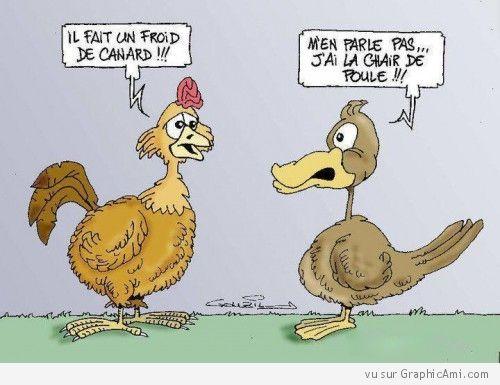 Bevorzugt Et oui c'est l'hiver ! Dialogue entre une Poule et un Canard | Jeu  XP07