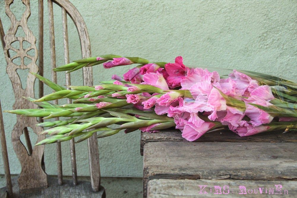 Happiness is a big bunch of gladioli.