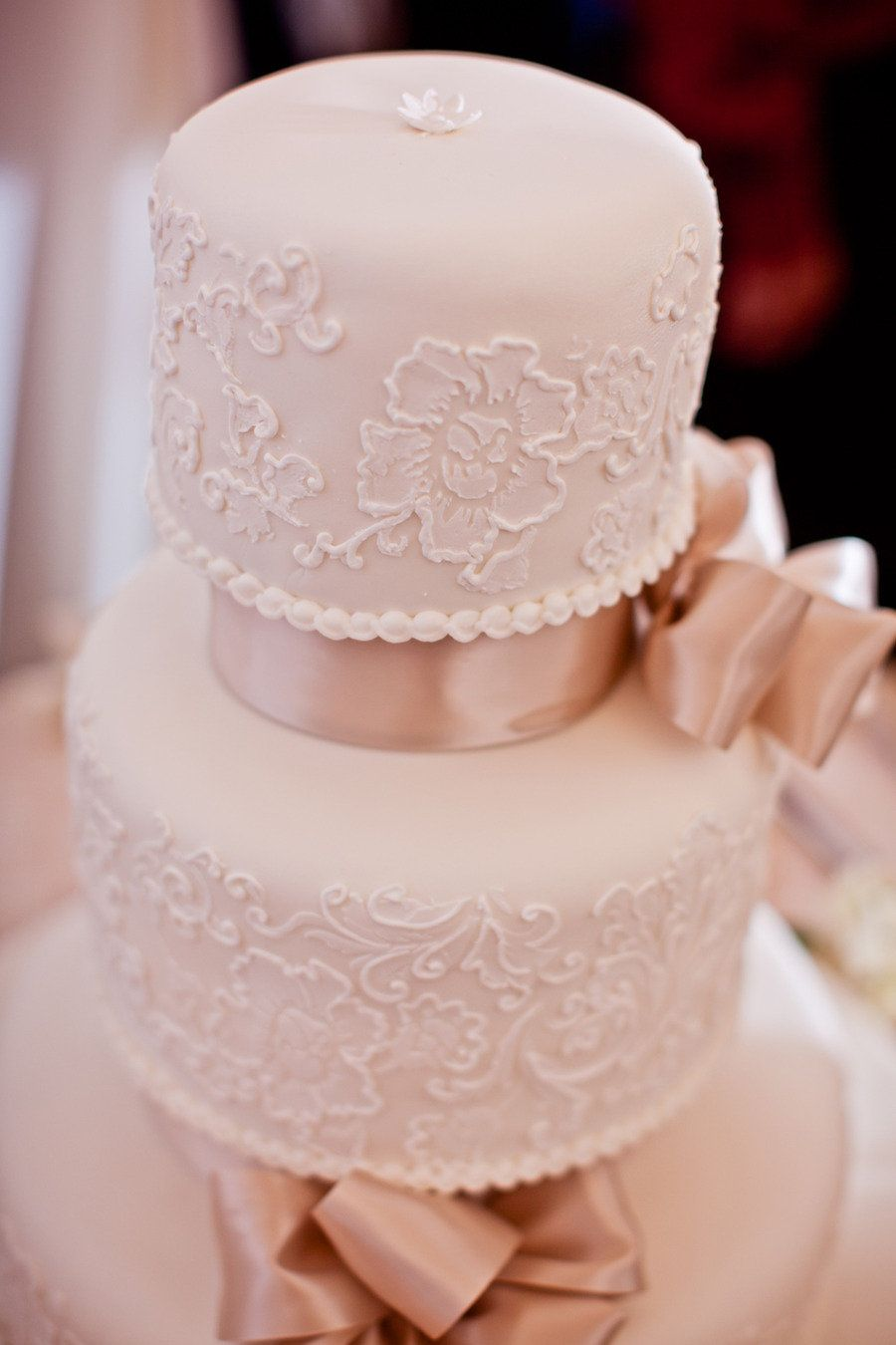 Cake by Susie's Scrumptious Sweets ~ Photography by Teran Photography ~  Wedding on SMP's Florida Blog (click the image for all the pretty!)