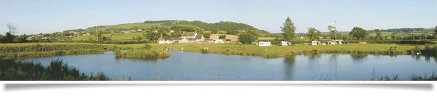Spillers Farm, Axminster Devon - Accommodation and Smallholding