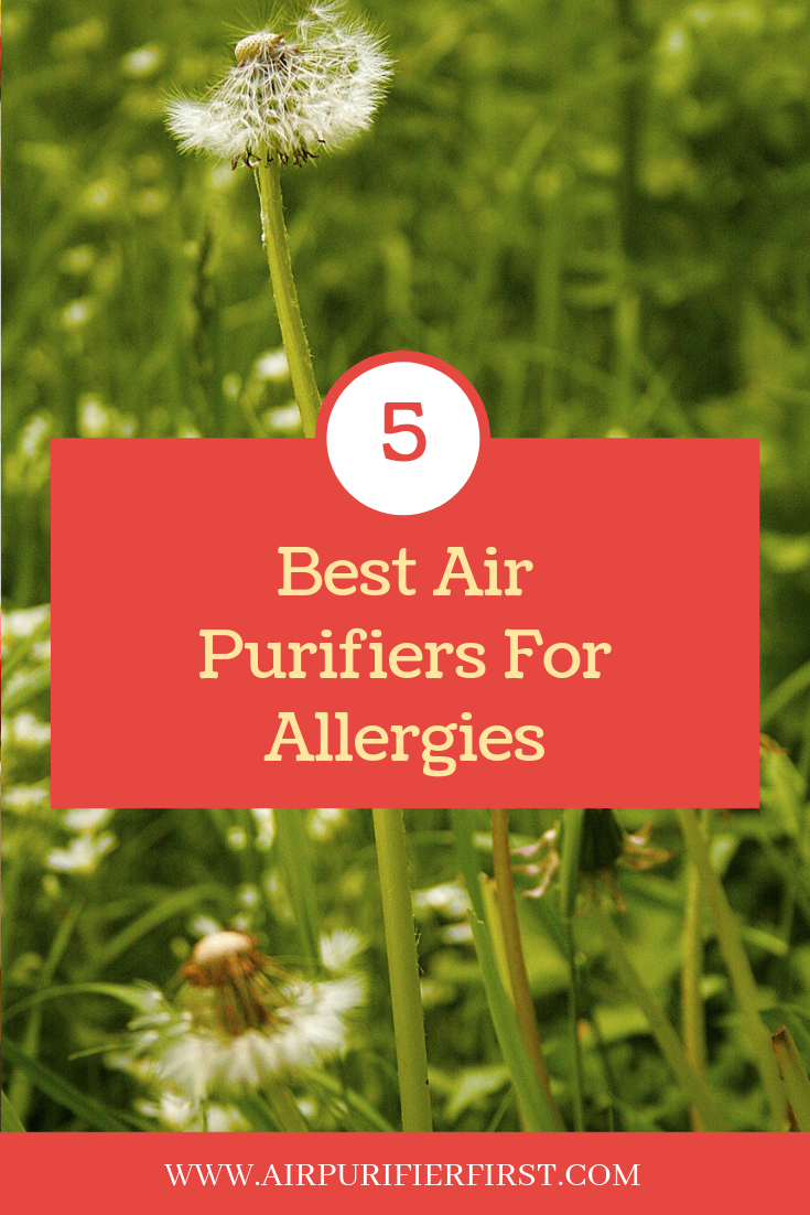 For Allergies Air purifier allergies, Air purifier, Purifier