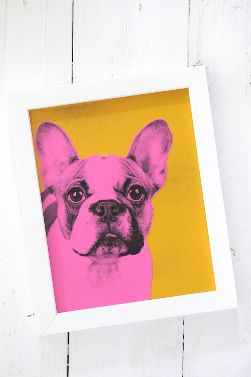 Make your own pop art pet portrait warhol portraits and easy pop art pet portrais inspired by andy warhol and easy to make solutioingenieria Gallery