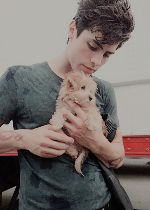 matthew daddario tumblrmatthew daddario gif, matthew daddario tumblr, matthew daddario photoshoot, matthew daddario gif hunt, matthew daddario instagram, matthew daddario png, matthew daddario личная жизнь, matthew daddario vk, matthew daddario gif hunt tumblr, matthew daddario harry shum, matthew daddario and katherine mcnamara, matthew daddario gif tumblr, matthew daddario listal, matthew daddario screencaps, matthew daddario site, matthew daddario icons, matthew daddario sister, matthew daddario official, matthew daddario snapchat, matthew daddario wikipedia