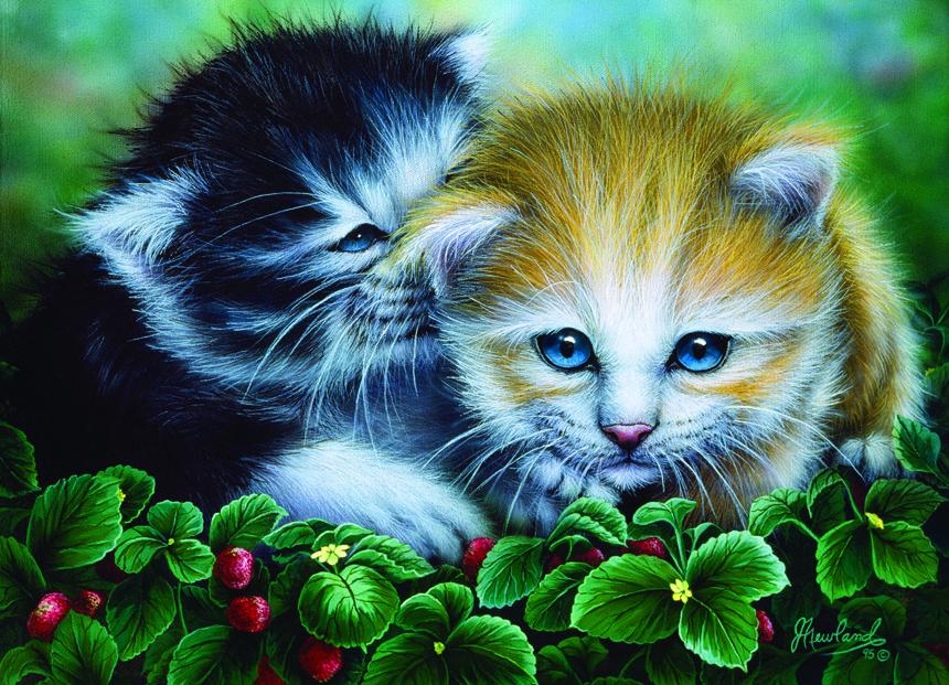 Иллюстрации:Замечательные соседи - кошки и собаки ...