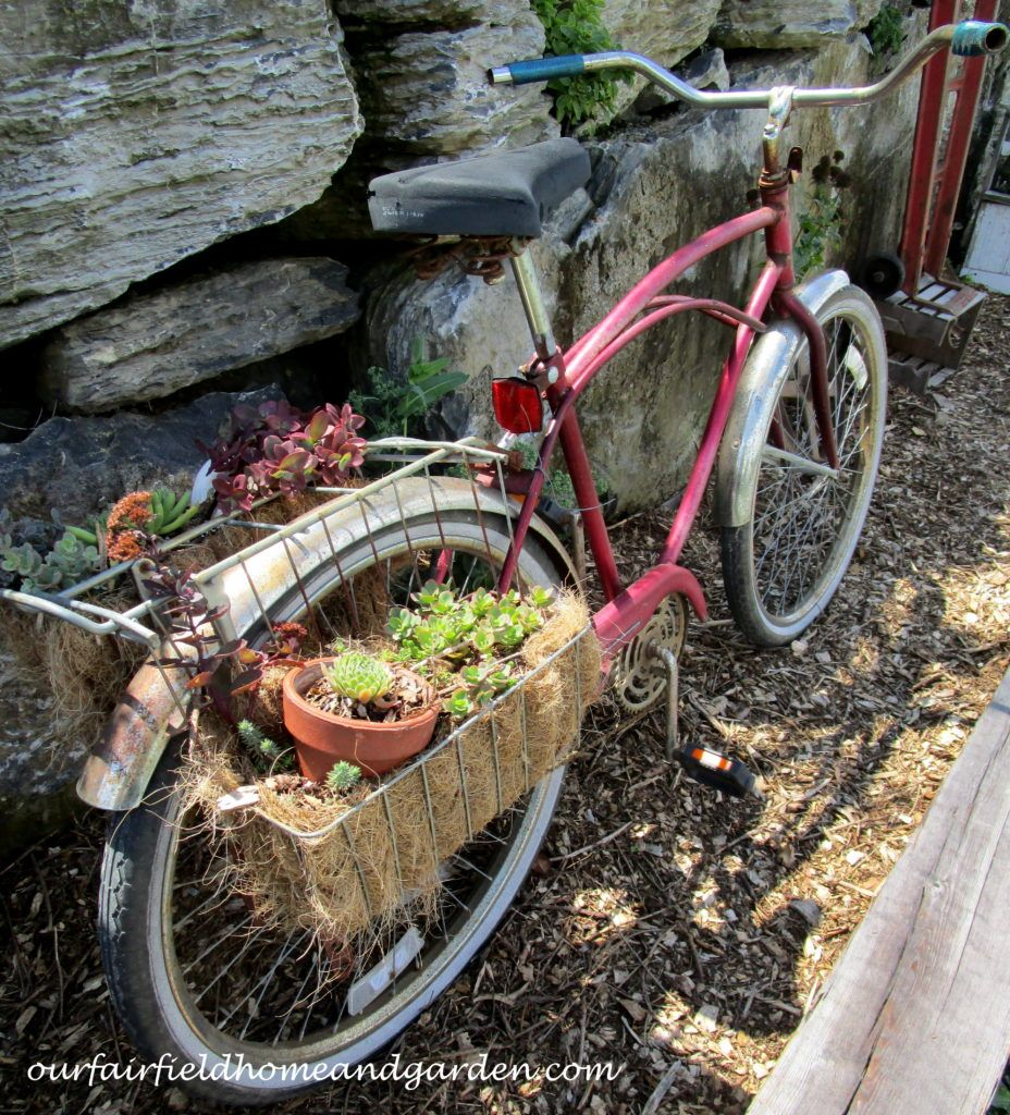 Field Trip  ~  Country Lane Succulents, New Holland, PA