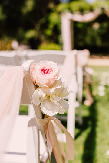 Photo from Casey & Adrianna Wedding collection by Lillywhite Photography