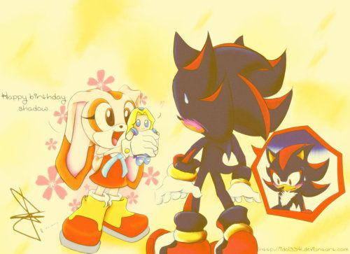 Cream the Rabbit and Shadow the Hedgehog. What do you think of Shadow's reaction to Cream's 'present'?