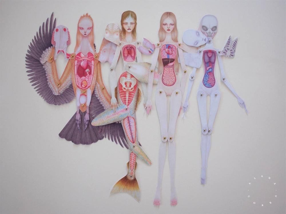 Set of 4 Paper Anatomy Dolls - Human, Mermaid, Alien ...