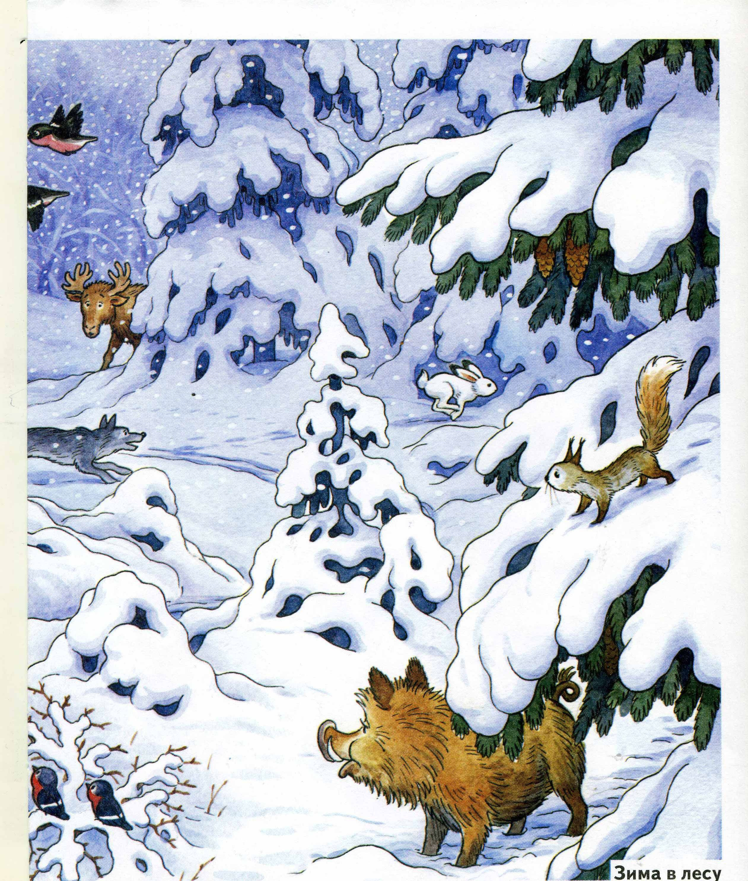 Зимний лес рисунки для детей