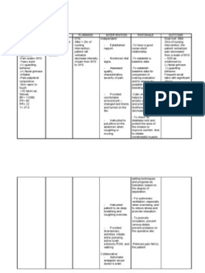 Postoperative Nursing Care Plan For Cesarian Section Patient Case Pres Or Nursing Care Plan Care Plans Nursing Care