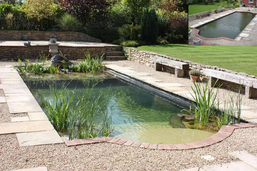 Another Natural Swimming Pool I Like This Idea No Damaging Chlorine And Birds Cats Dogs Etc Can Drink With Avec Images Piscine Naturelle Jardin D Eau Piscine Et Jardin