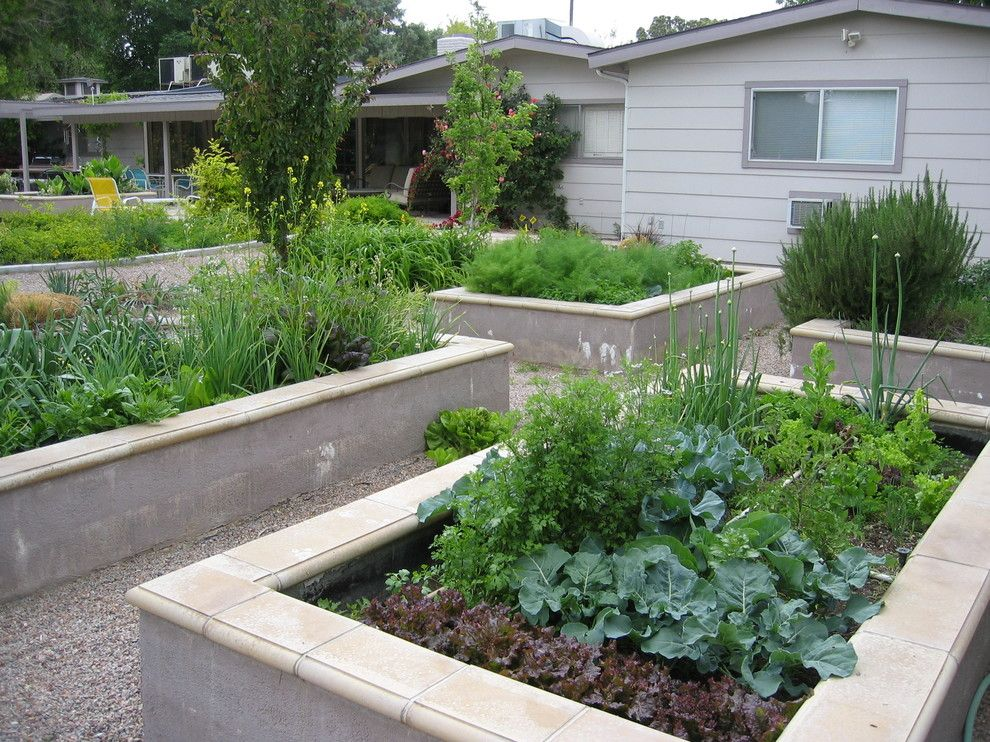 Metal raised garden beds landscape modern with raised for Vegetable garden bed design