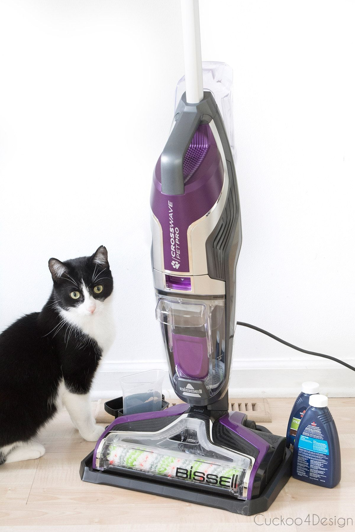 My BISSELL CrossWave Pet Pro review Pets, Funny animal