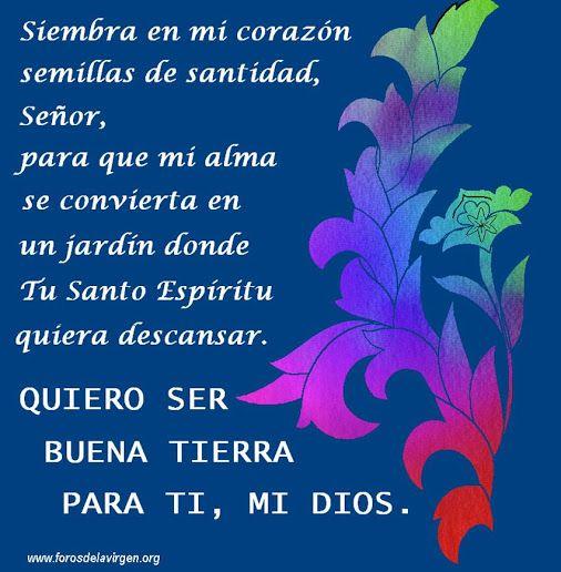 Siembra en mi corazón semillas de santidad, Señor, para ...