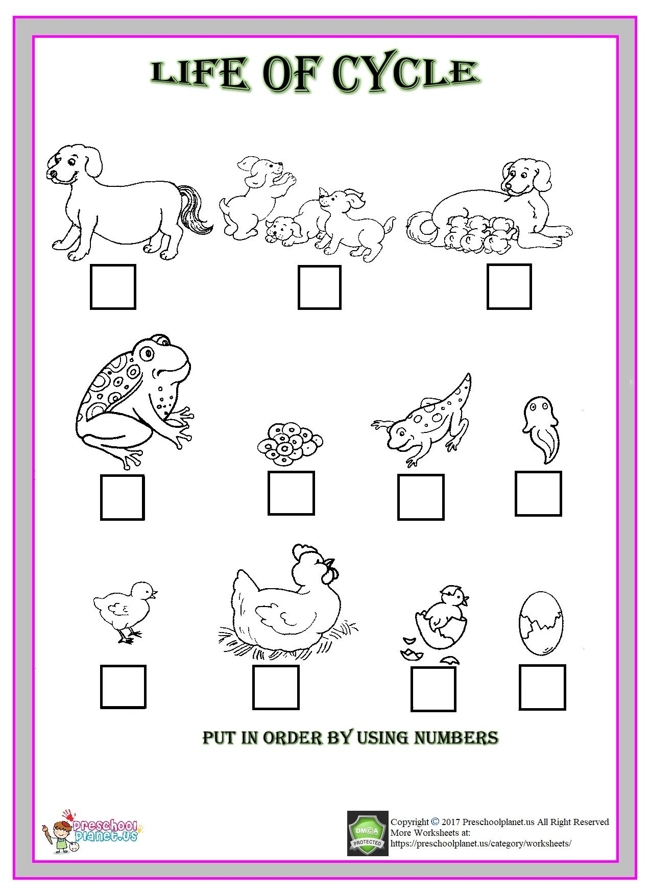 Animal Worksheets 2nd Grade