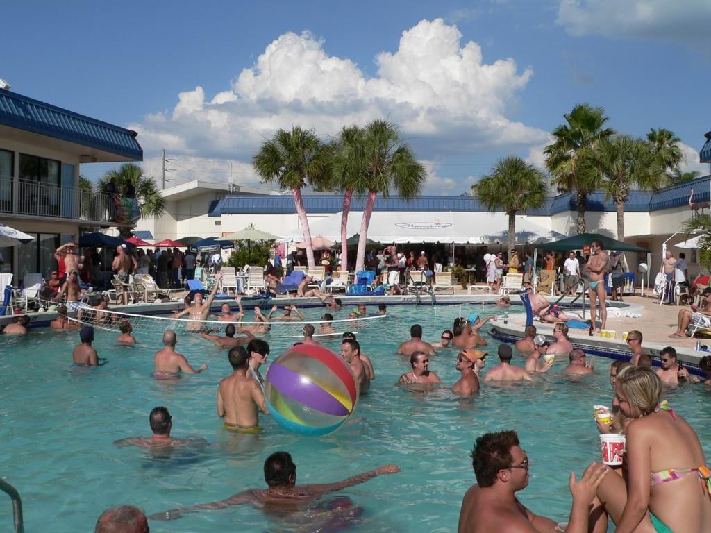 Flamingo Resort outdoor swimming pool Flamingo resort