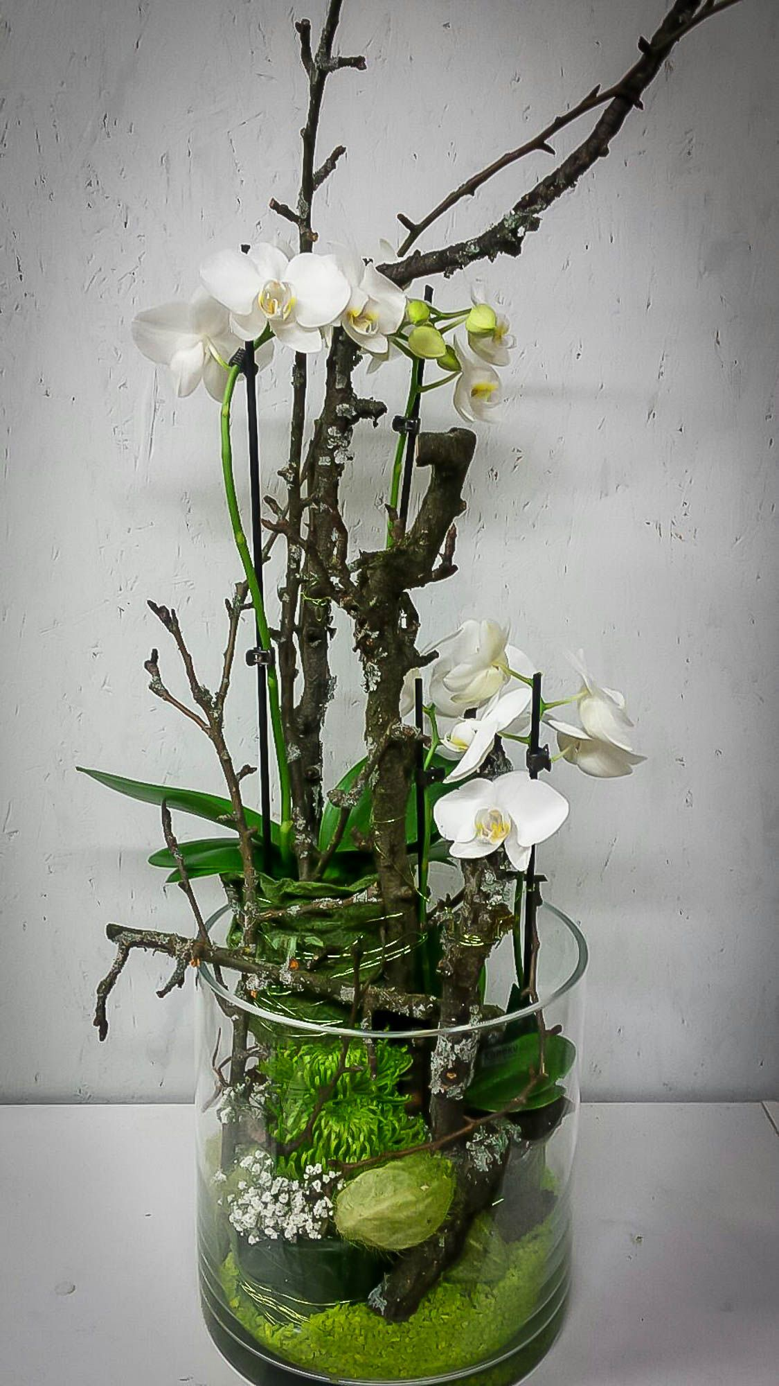 Orchideen Im Glas Dekorieren : ein google profil f r die blumenm nche deko blumen ~ Watch28wear.com Haus und Dekorationen