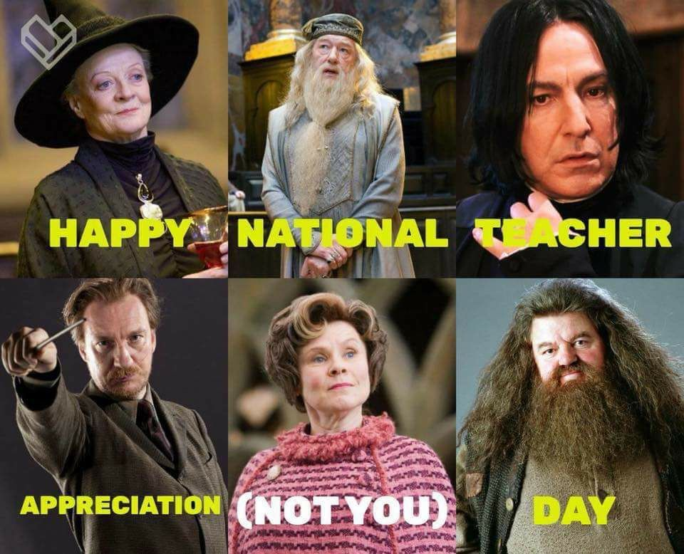 Hogwarts Professor Humor | Harry Potter | Harry potter