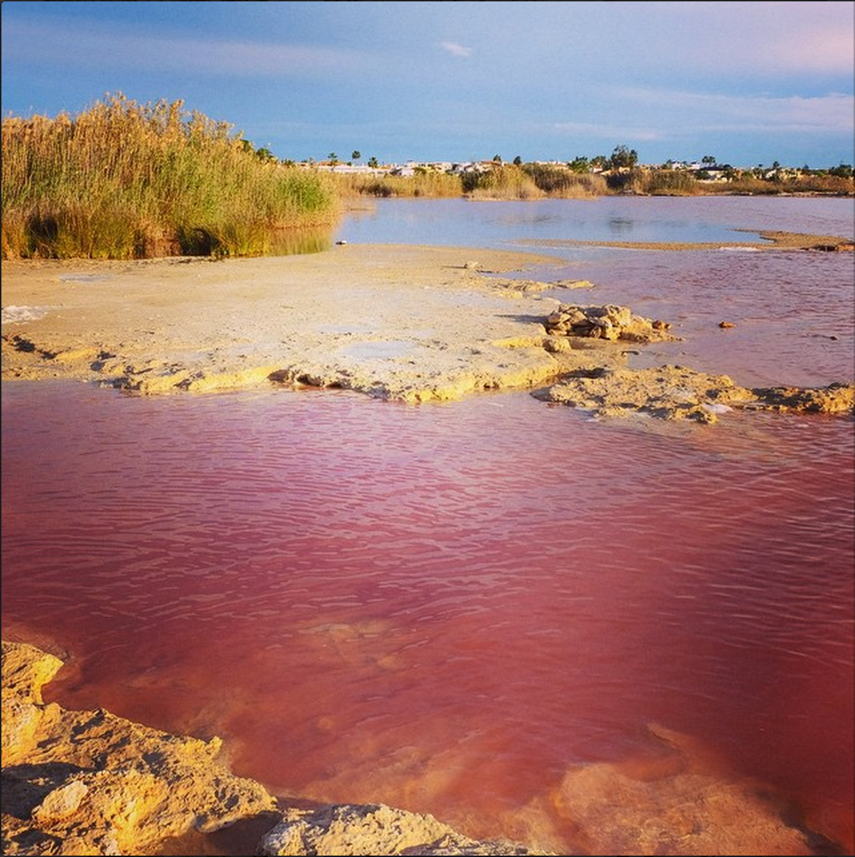 Pink salt lake in Torrevieja, Spain. Learn More @ http://www.spain-holiday.com/Alicante-province/articles/alicantes-pink-and-green-salt-lakes