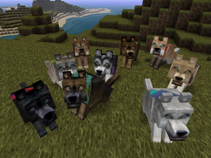 Horse Texture Pack Google Search Download Pinterest - Minecraft texture pack namen andern